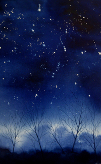 Starry night by Megan Richard